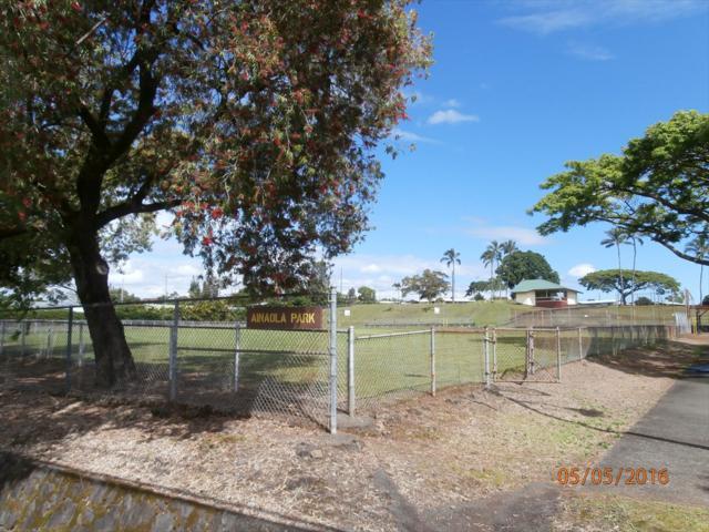 186 Ainaola Drive, Hilo, HI 96720 (MLS #620520) :: Elite Pacific Properties
