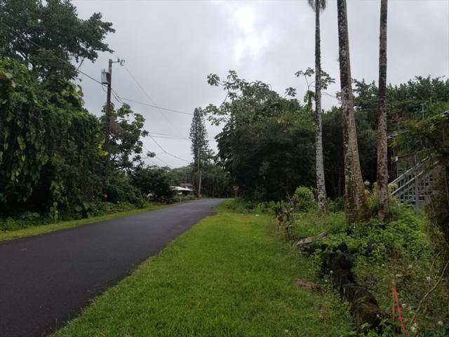 15-2682 Opelu St, Pahoa, HI 96778 (MLS #620620) :: Aloha Kona Realty, Inc.