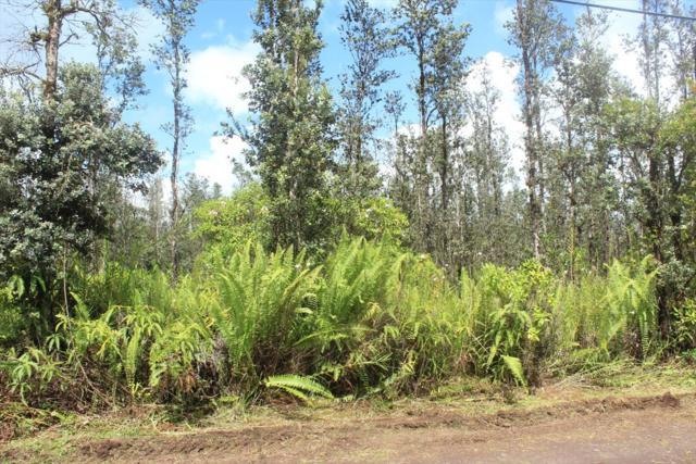 16-1611 Opeapea Rd, Kurtistown, HI 96760 (MLS #620624) :: Aloha Kona Realty, Inc.