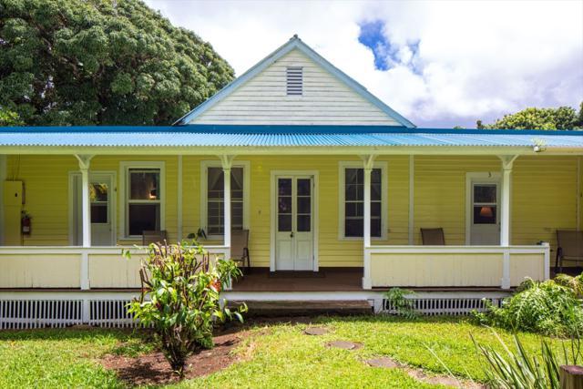 54-3793 Akoni Pule Hwy, Kapaau, HI 96755 (MLS #620641) :: Elite Pacific Properties