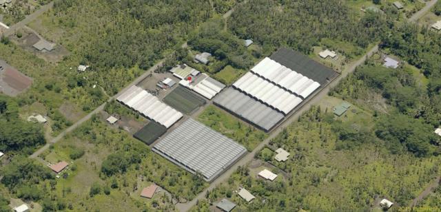 15-1819 15TH AVE, Keaau, HI 96749 (MLS #620677) :: Elite Pacific Properties