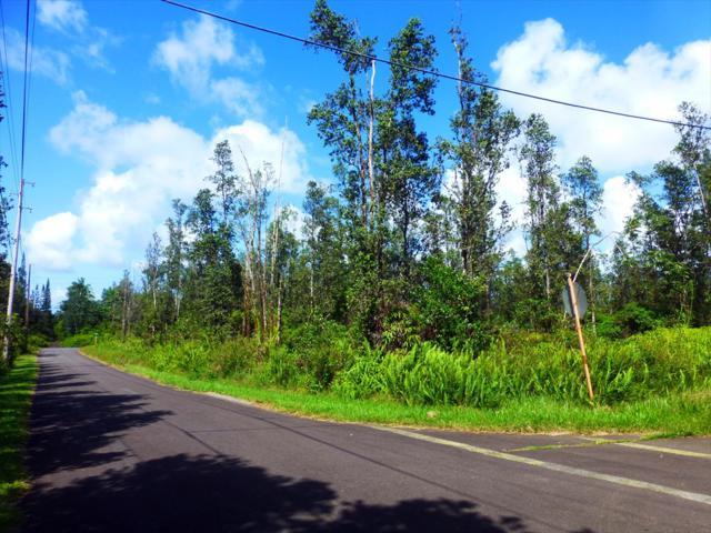 16-431 Brookover St, Keaau, HI 96749 (MLS #620748) :: Aloha Kona Realty, Inc.