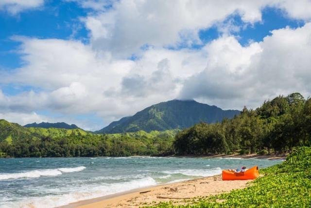 5709-A Kuhio Ave, Hanalei, HI 96714 (MLS #620813) :: Elite Pacific Properties