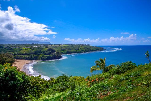 2991 Kaohe Rd, Kilauea, HI 96754 (MLS #620925) :: Kauai Exclusive Realty