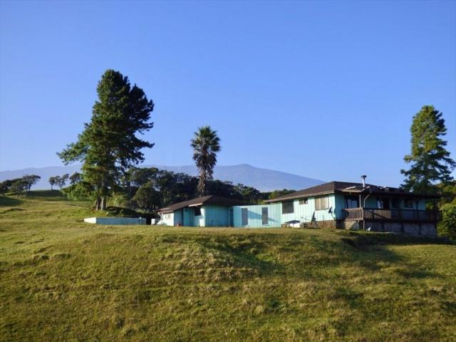 44-5397 Waikaalulu Rd, Honokaa, HI 96727 (MLS #620976) :: Elite Pacific Properties
