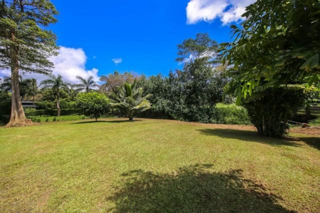 751 Puuopae Road, Kapaa, HI 96746 (MLS #620985) :: Kauai Real Estate Group