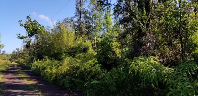 16-1071 Opeapea Rd, Mountain View, HI 96771 (MLS #620992) :: Aloha Kona Realty, Inc.