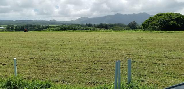 4141 Kilauea Rd, Kilauea, HI 96754 (MLS #621017) :: Kauai Exclusive Realty