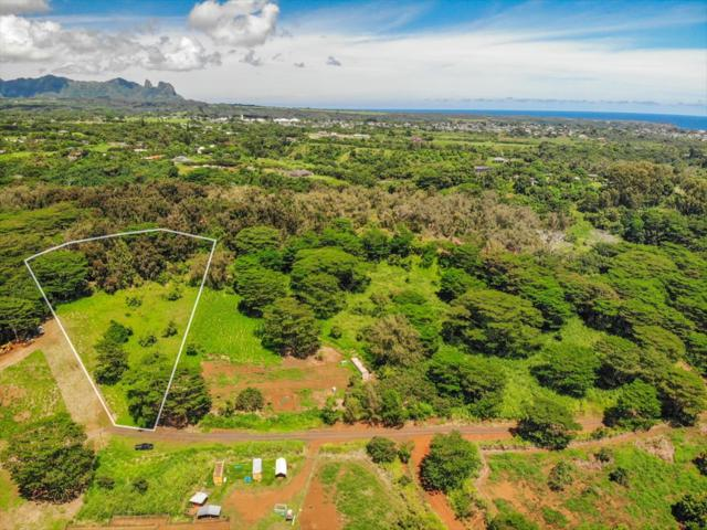 Address Not Published, Kapaa, HI 96746 (MLS #621083) :: Aloha Kona Realty, Inc.