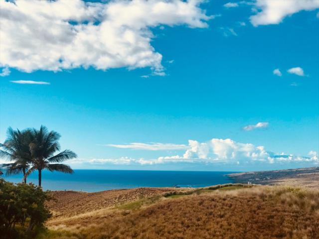 62-3600 Amaui Place, Kamuela, HI 96743 (MLS #621095) :: Aloha Kona Realty, Inc.