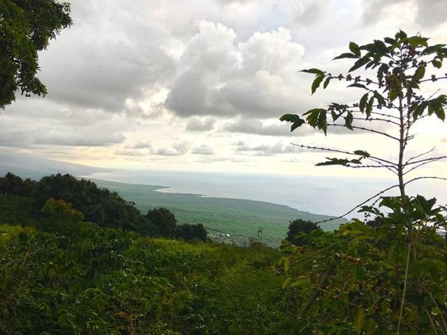 82-5950 Hawaii Belt Rd, Captain Cook, HI 96704 (MLS #621099) :: Aloha Kona Realty, Inc.
