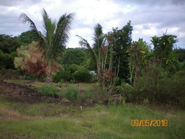 Address Not Published, Kurtistown, HI 96760 (MLS #621119) :: Elite Pacific Properties