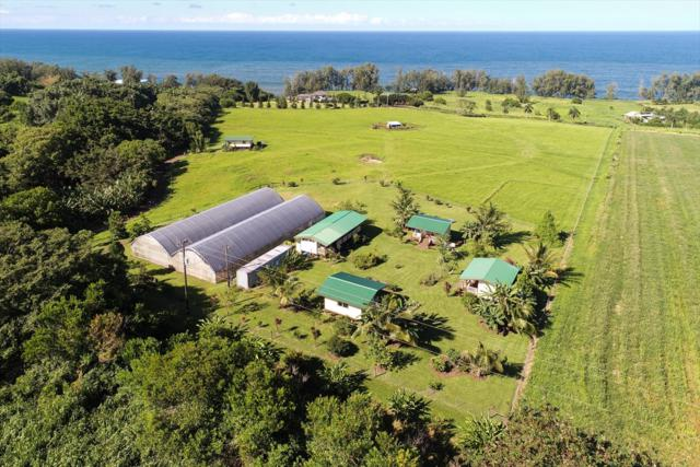 28-3311 Beach Rd, Pepeekeo, HI 96783 (MLS #621167) :: Elite Pacific Properties