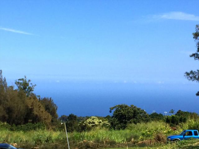 Lehua St, Honokaa, HI 96727 (MLS #621300) :: Aloha Kona Realty, Inc.