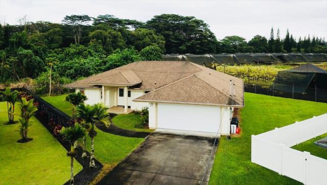 270 Noelani Lp, Hilo, HI 96720 (MLS #621308) :: Aloha Kona Realty, Inc.