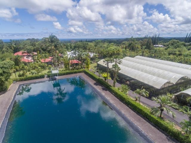 17-4365 Huina Rd, Kurtistown, HI 96760 (MLS #621312) :: Elite Pacific Properties