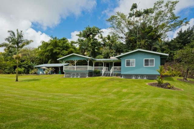 17-317 Kaloke Pl, Keaau, HI 96749 (MLS #621326) :: Aloha Kona Realty, Inc.
