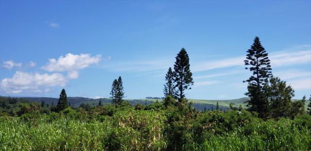 Kalai Waa Pl, Naalehu, HI 96772 (MLS #621346) :: Aloha Kona Realty, Inc.