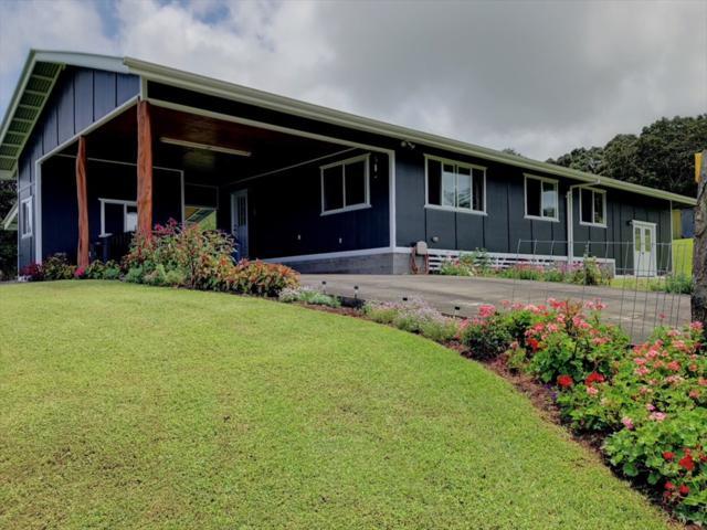 43-670 Antone Deluz Rd, Paauilo, HI 96776 (MLS #621480) :: Elite Pacific Properties