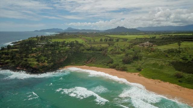 Paliku Pl, Kealia, HI 96751 (MLS #621520) :: Kauai Exclusive Realty