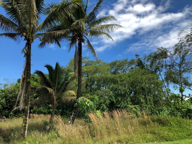 Address Not Published, Hilo, HI 96720 (MLS #621524) :: Aloha Kona Realty, Inc.