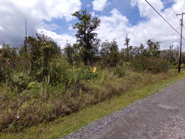 11-2223 Road, Volcano, HI 96785 (MLS #621588) :: Aloha Kona Realty, Inc.