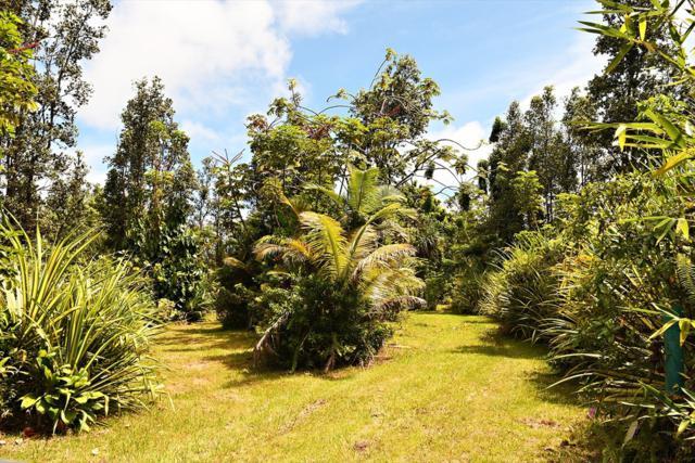 16-1859 Moho Rd, Kurtistown, HI 96760 (MLS #621590) :: Aloha Kona Realty, Inc.