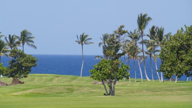 68-1002 Konane Ct, Kamuela, HI 96743 (MLS #621598) :: Elite Pacific Properties