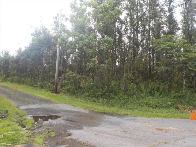 Paradise Rd, Pahoa, HI 96778 (MLS #621604) :: Elite Pacific Properties