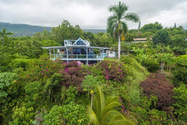 84-5220 Painted Church Rd, Honaunau, HI 96726 (MLS #621615) :: Song Real Estate Team/Keller Williams Realty Kauai