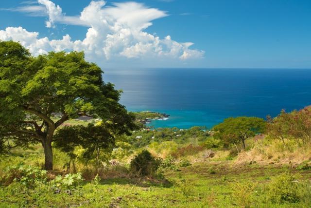 Address Not Published, Captain Cook, HI 96704 (MLS #621627) :: Oceanfront Sotheby's International Realty