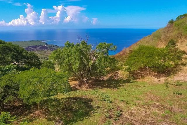 Address Not Published, Captain Cook, HI 96704 (MLS #621629) :: Elite Pacific Properties