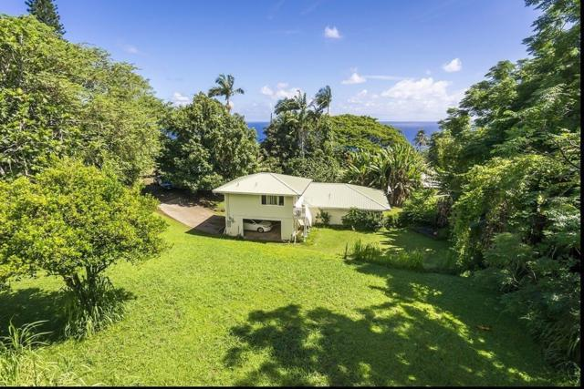 36-2289 Hawaii Belt Rd, Laupahoehoe, HI 96764 (MLS #621638) :: Elite Pacific Properties