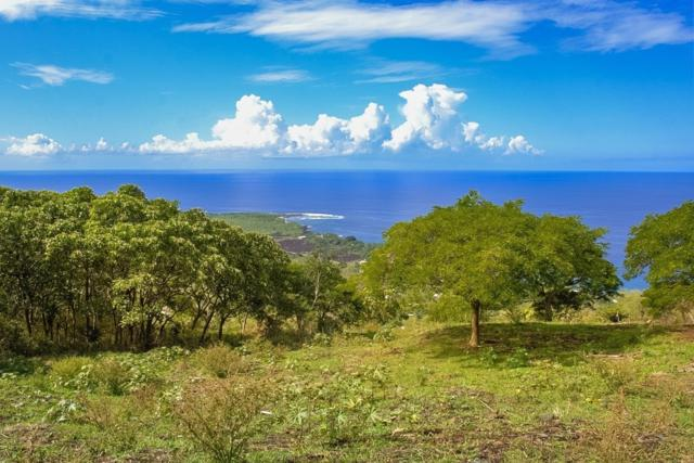 Address Not Published, Captain Cook, HI 96704 (MLS #621649) :: Aloha Kona Realty, Inc.