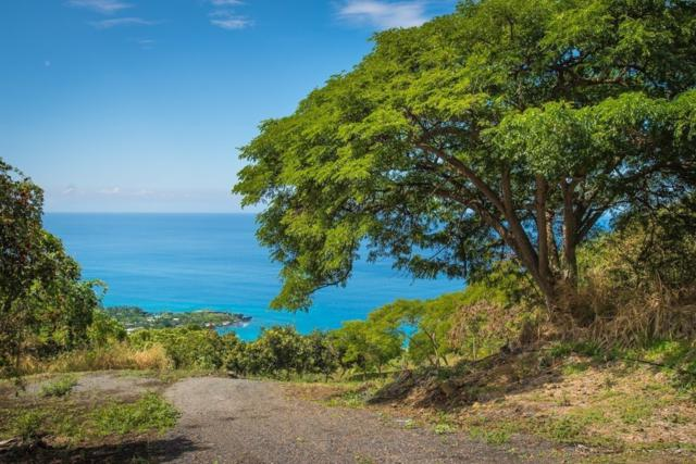 Address Not Published, Captain Cook, HI 96704 (MLS #621653) :: Aloha Kona Realty, Inc.