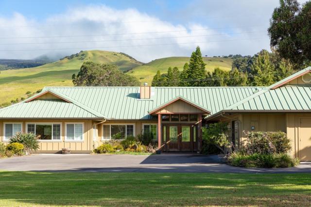 66-1486 E Ko Uka Pl, Kamuela, HI 96743 (MLS #621712) :: Elite Pacific Properties