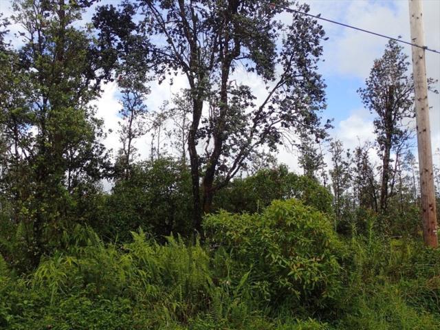 Sugarcane Ln, Pahoa, HI 96778 (MLS #621872) :: Elite Pacific Properties