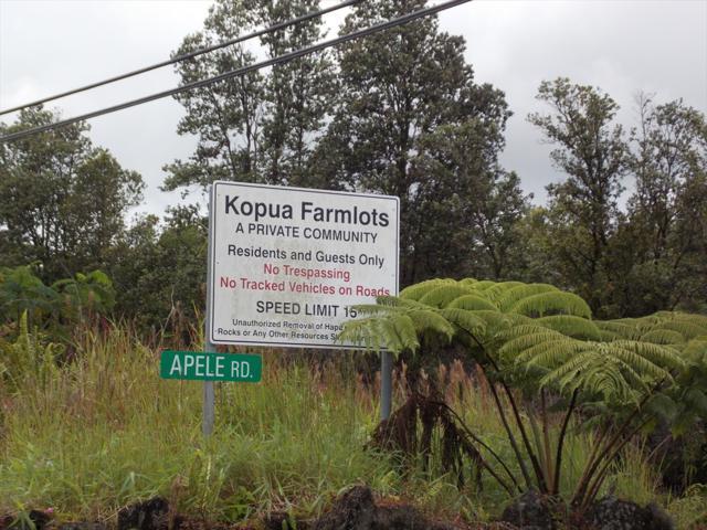 11-2960 Apele Rd, Mountain View, HI 96771 (MLS #621903) :: Aloha Kona Realty, Inc.