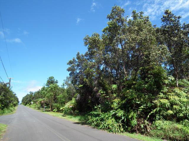 Address Not Published, Volcano, HI 96785 (MLS #622014) :: Elite Pacific Properties