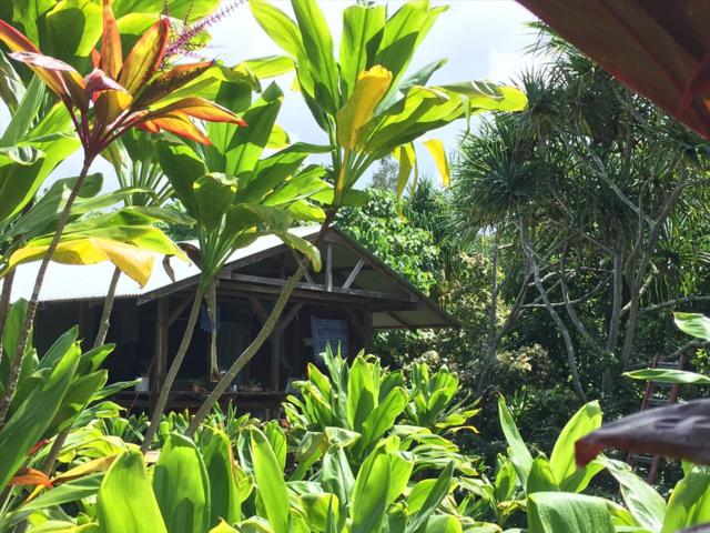 Government Beach Rd, Pahoa, HI 96778 (MLS #622051) :: Aloha Kona Realty, Inc.