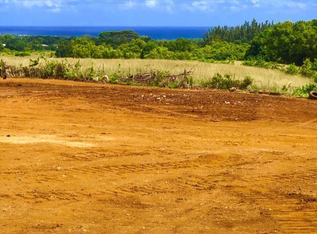 6515 Hauiki Rd, Kapaa, HI 96746 (MLS #622147) :: Aloha Kona Realty, Inc.