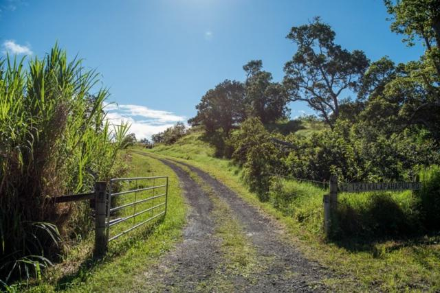 Address Not Published, Kukaiau, HI 96776 (MLS #622270) :: Aloha Kona Realty, Inc.