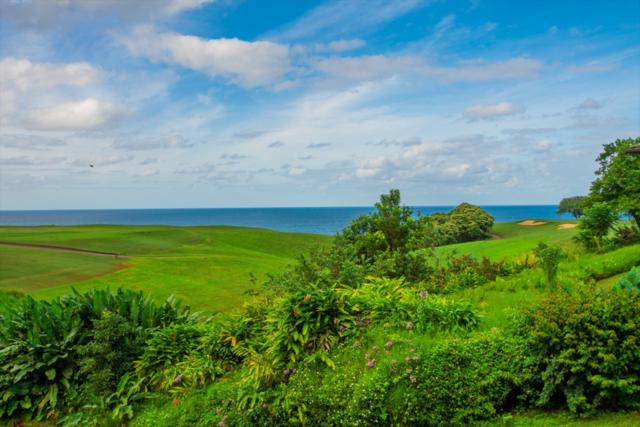 3880 Wyllie Rd, Princeville, HI 96722 (MLS #622279) :: Elite Pacific Properties