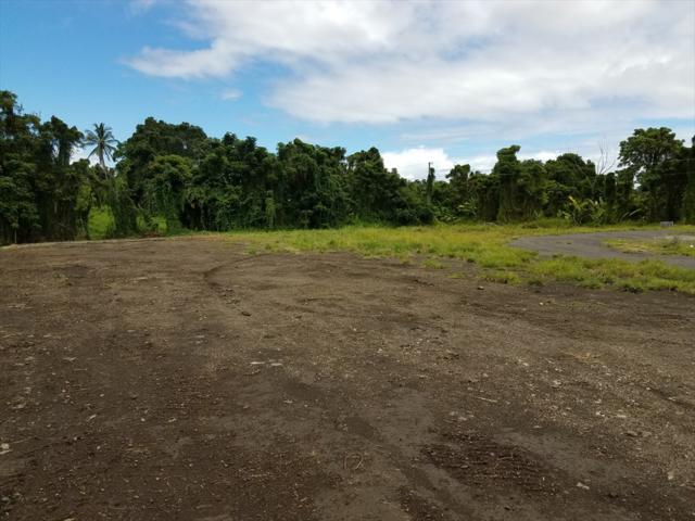 46 Santos St, Hilo, HI 96720 (MLS #622365) :: Oceanfront Sotheby's International Realty