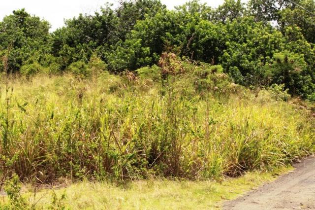 Puka St, Naalehu, HI 96772 (MLS #622401) :: Song Real Estate Team | LUVA Real Estate