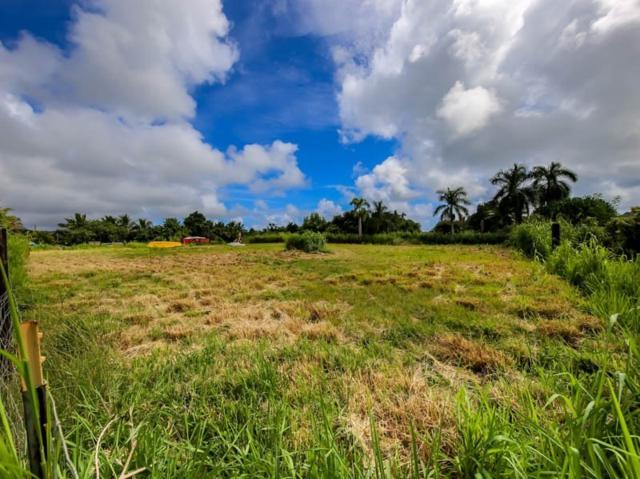 Kawaihau Rd, Kapaa, HI 96746 (MLS #622454) :: Elite Pacific Properties