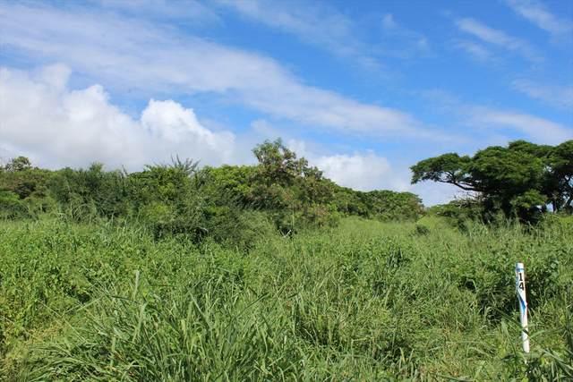 Punaluu Road, Pahala, HI 96777 (MLS #622568) :: Iokua Real Estate, Inc.