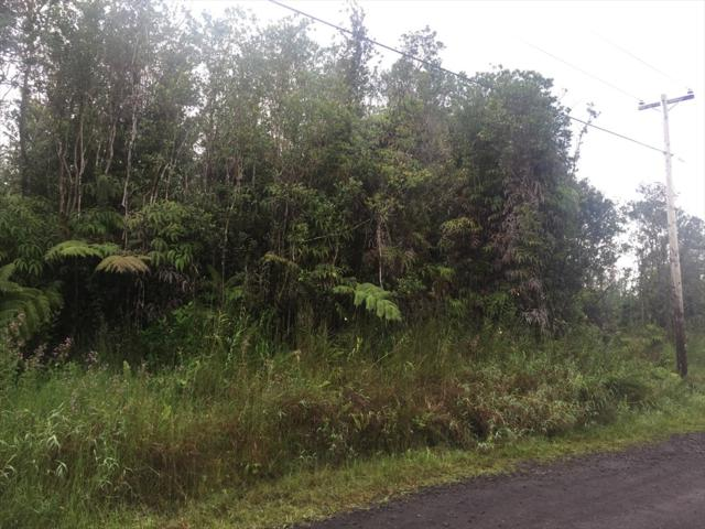 Address Not Published, Volcano, HI 96785 (MLS #622592) :: Elite Pacific Properties