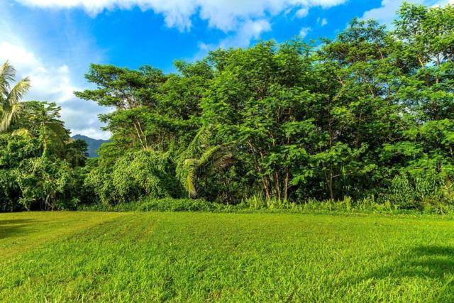 1389 Honoohala Pl, Kapaa, HI 96746 (MLS #622635) :: Elite Pacific Properties