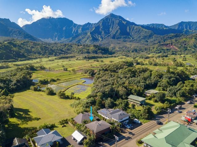 5-5085 Kuhio Hwy, Hanalei, HI 96714 (MLS #622678) :: Elite Pacific Properties